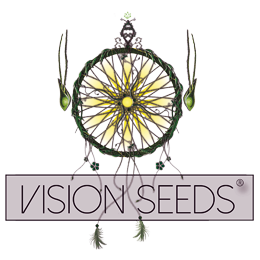VisionSeeds (1)